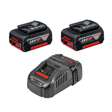 Pack 2 batteries + chargeur