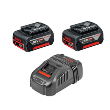 Pack 2 batteries Bosch