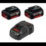 Pack 2 batteries